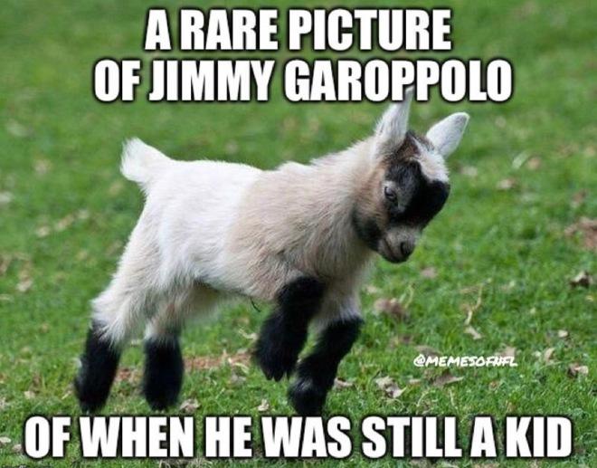 jimmy goat